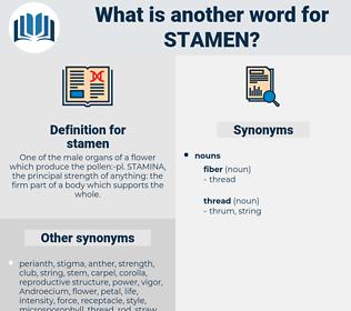 stamen, synonym stamen, another word for stamen, words like stamen, thesaurus stamen