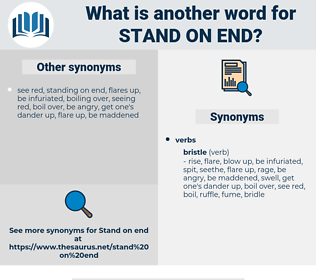 stand on end, synonym stand on end, another word for stand on end, words like stand on end, thesaurus stand on end