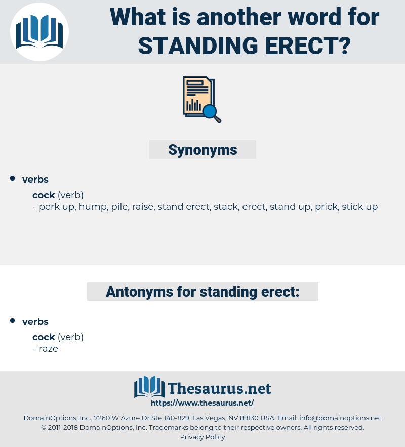 standing erect, synonym standing erect, another word for standing erect, words like standing erect, thesaurus standing erect