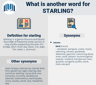 starling, synonym starling, another word for starling, words like starling, thesaurus starling