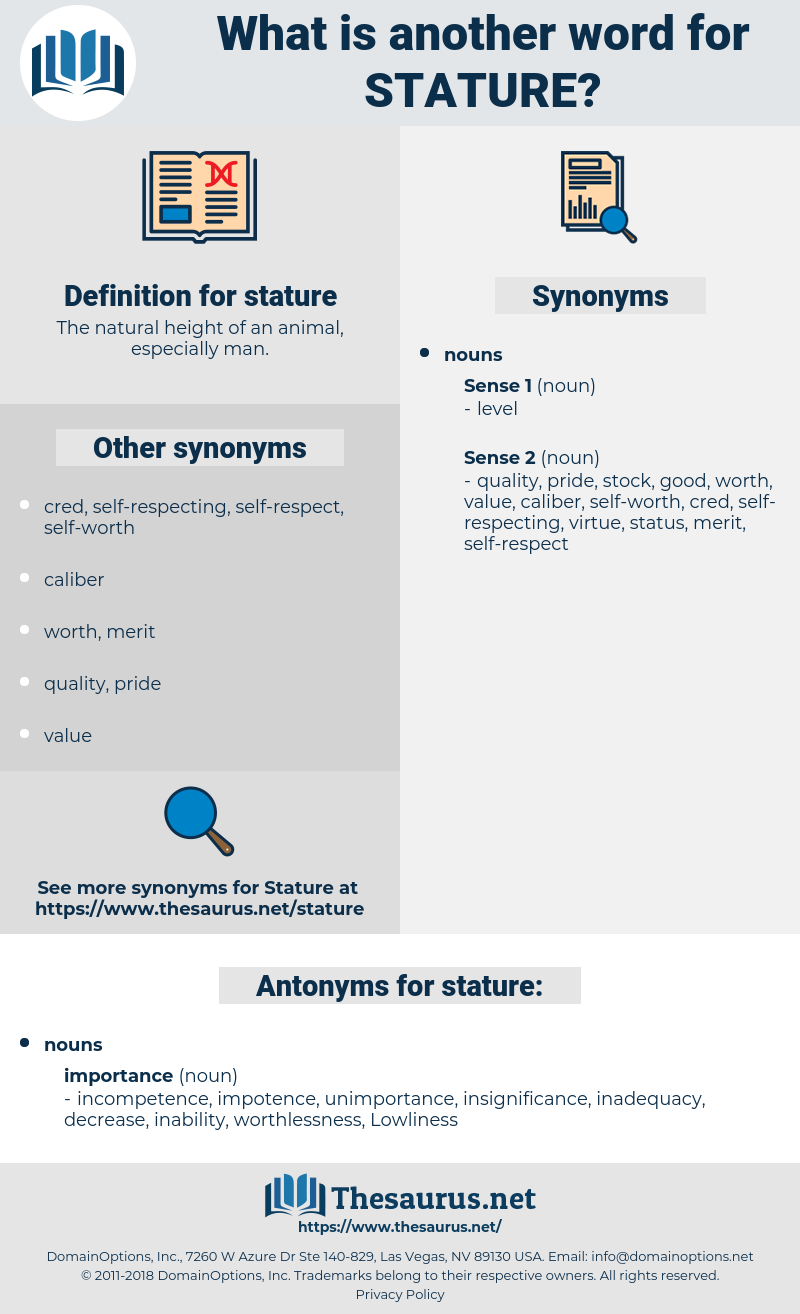stature, synonym stature, another word for stature, words like stature, thesaurus stature