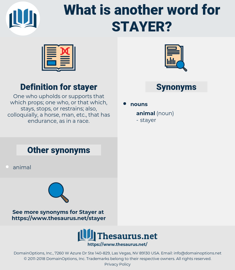 stayer, synonym stayer, another word for stayer, words like stayer, thesaurus stayer