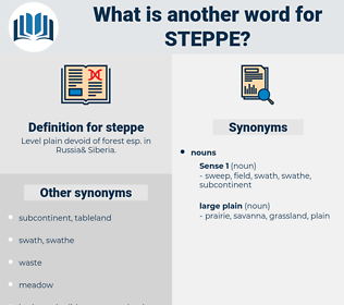 steppe, synonym steppe, another word for steppe, words like steppe, thesaurus steppe