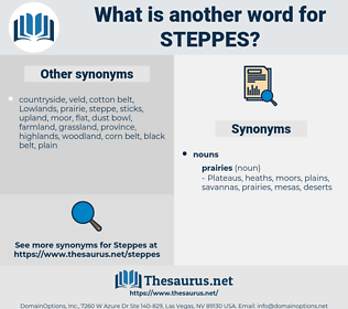 steppes, synonym steppes, another word for steppes, words like steppes, thesaurus steppes