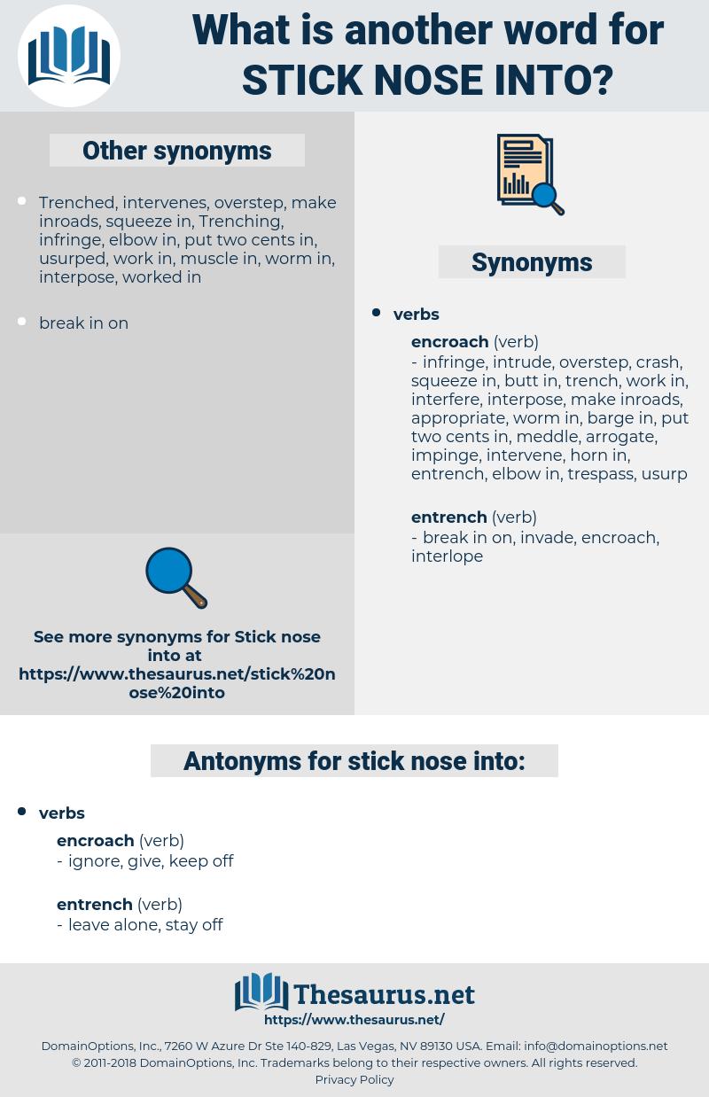 stick nose into, synonym stick nose into, another word for stick nose into, words like stick nose into, thesaurus stick nose into