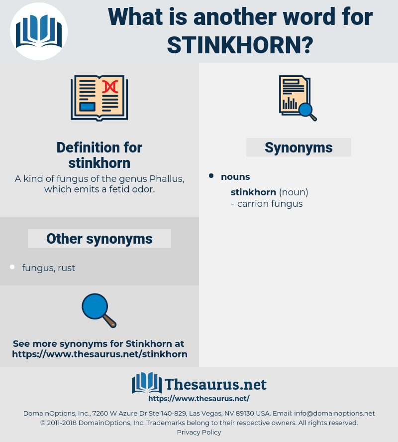 stinkhorn, synonym stinkhorn, another word for stinkhorn, words like stinkhorn, thesaurus stinkhorn