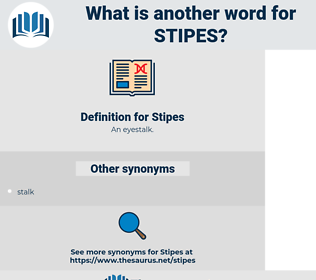 Stipes, synonym Stipes, another word for Stipes, words like Stipes, thesaurus Stipes
