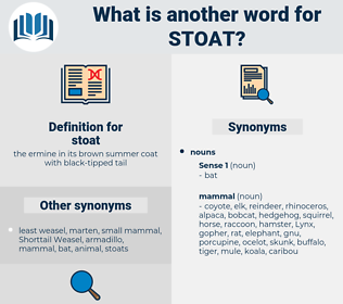 stoat, synonym stoat, another word for stoat, words like stoat, thesaurus stoat