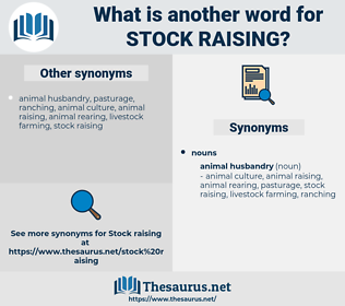 stock raising, synonym stock raising, another word for stock raising, words like stock raising, thesaurus stock raising