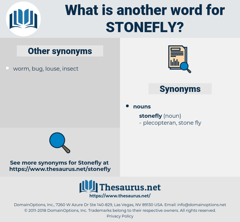 stonefly, synonym stonefly, another word for stonefly, words like stonefly, thesaurus stonefly