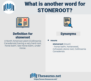 stoneroot, synonym stoneroot, another word for stoneroot, words like stoneroot, thesaurus stoneroot