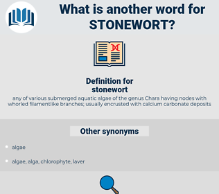 stonewort, synonym stonewort, another word for stonewort, words like stonewort, thesaurus stonewort