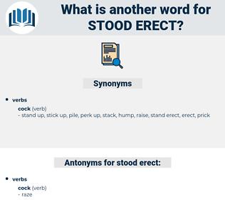 stood erect, synonym stood erect, another word for stood erect, words like stood erect, thesaurus stood erect