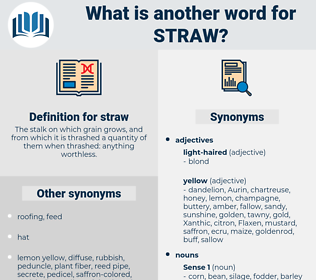straw, synonym straw, another word for straw, words like straw, thesaurus straw