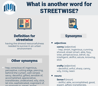streetwise, synonym streetwise, another word for streetwise, words like streetwise, thesaurus streetwise