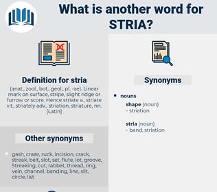 stria, synonym stria, another word for stria, words like stria, thesaurus stria