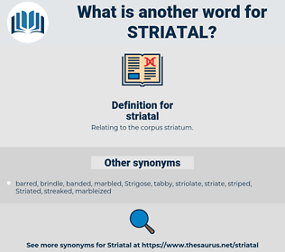 striatal, synonym striatal, another word for striatal, words like striatal, thesaurus striatal