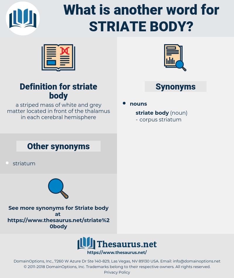 striate body, synonym striate body, another word for striate body, words like striate body, thesaurus striate body