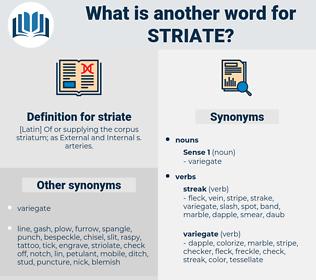 striate, synonym striate, another word for striate, words like striate, thesaurus striate