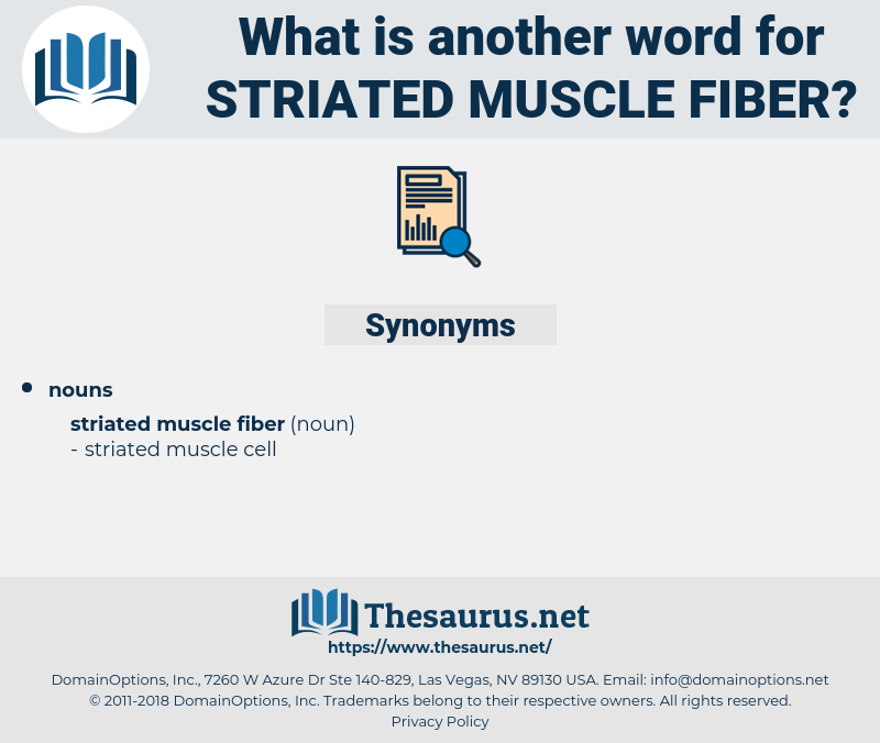 striated muscle fiber, synonym striated muscle fiber, another word for striated muscle fiber, words like striated muscle fiber, thesaurus striated muscle fiber