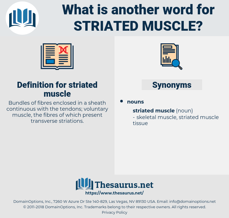 striated muscle, synonym striated muscle, another word for striated muscle, words like striated muscle, thesaurus striated muscle
