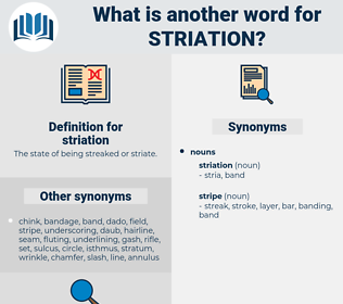 striation, synonym striation, another word for striation, words like striation, thesaurus striation