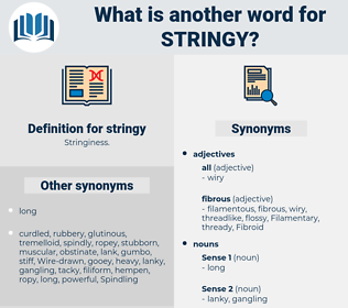 stringy, synonym stringy, another word for stringy, words like stringy, thesaurus stringy