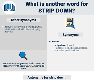 strip down, synonym strip down, another word for strip down, words like strip down, thesaurus strip down