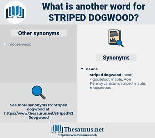 striped dogwood, synonym striped dogwood, another word for striped dogwood, words like striped dogwood, thesaurus striped dogwood