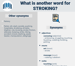 stroking, synonym stroking, another word for stroking, words like stroking, thesaurus stroking
