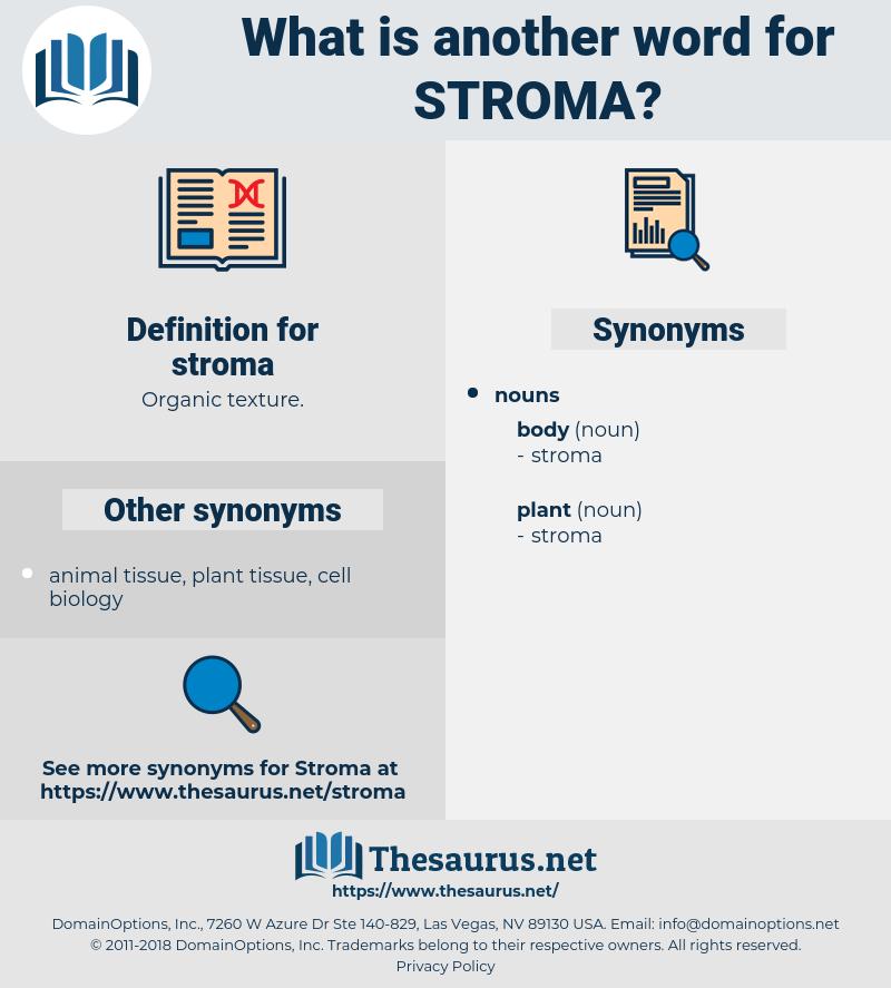 stroma, synonym stroma, another word for stroma, words like stroma, thesaurus stroma