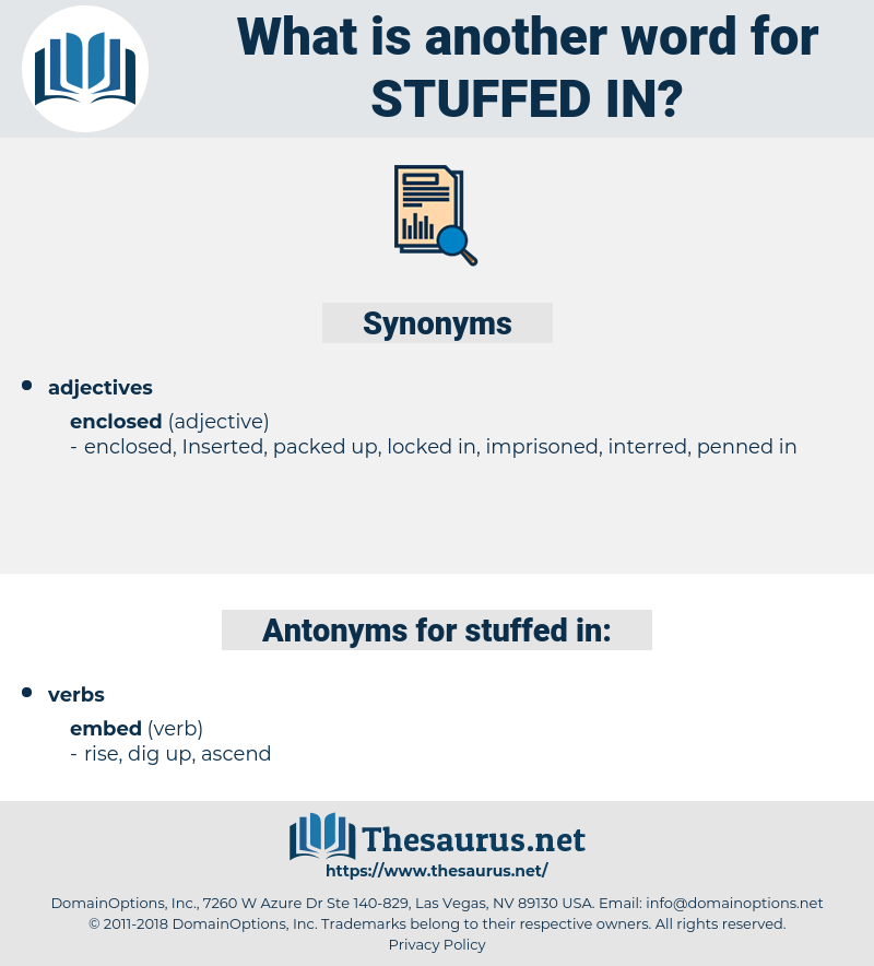 stuffed in, synonym stuffed in, another word for stuffed in, words like stuffed in, thesaurus stuffed in