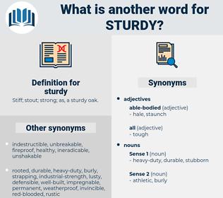 sturdy, synonym sturdy, another word for sturdy, words like sturdy, thesaurus sturdy