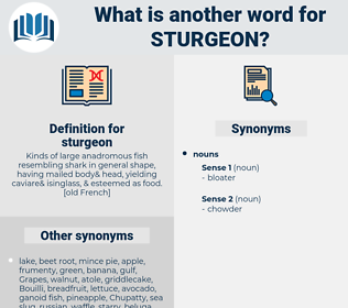 sturgeon, synonym sturgeon, another word for sturgeon, words like sturgeon, thesaurus sturgeon