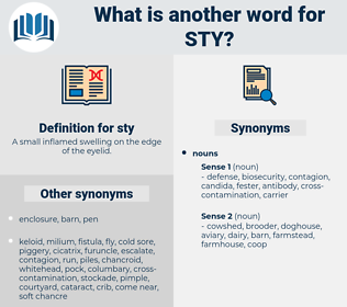 sty, synonym sty, another word for sty, words like sty, thesaurus sty