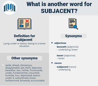 subjacent, synonym subjacent, another word for subjacent, words like subjacent, thesaurus subjacent