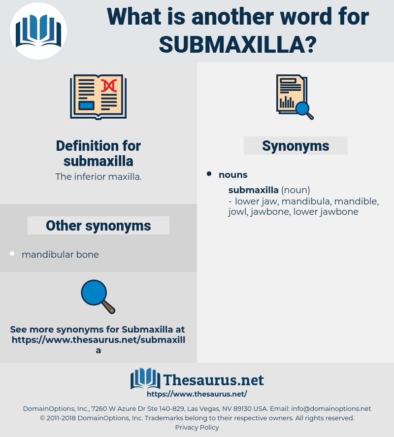submaxilla, synonym submaxilla, another word for submaxilla, words like submaxilla, thesaurus submaxilla