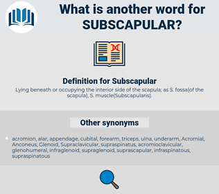 Subscapular, synonym Subscapular, another word for Subscapular, words like Subscapular, thesaurus Subscapular