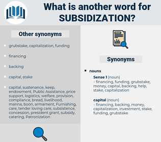 subsidization, synonym subsidization, another word for subsidization, words like subsidization, thesaurus subsidization