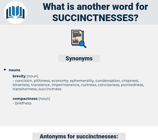 succinctnesses, synonym succinctnesses, another word for succinctnesses, words like succinctnesses, thesaurus succinctnesses