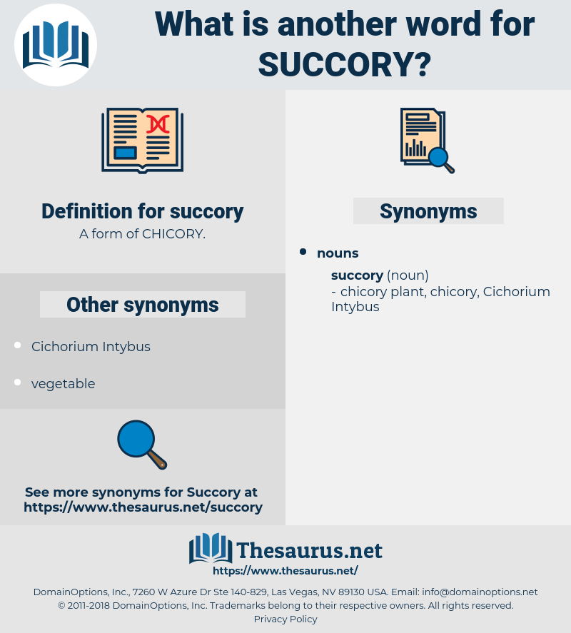 succory, synonym succory, another word for succory, words like succory, thesaurus succory
