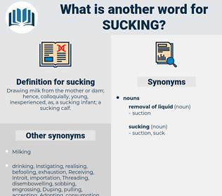 sucking, synonym sucking, another word for sucking, words like sucking, thesaurus sucking