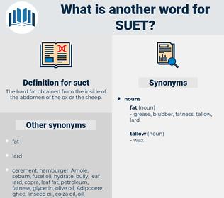 suet, synonym suet, another word for suet, words like suet, thesaurus suet