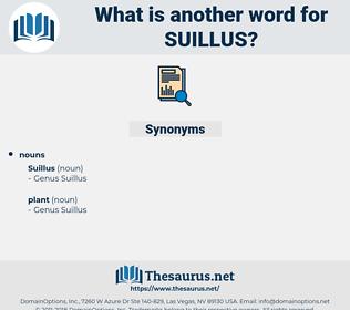 suillus, synonym suillus, another word for suillus, words like suillus, thesaurus suillus