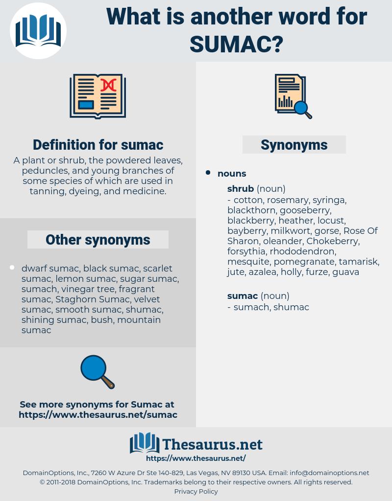 sumac, synonym sumac, another word for sumac, words like sumac, thesaurus sumac