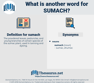 sumach, synonym sumach, another word for sumach, words like sumach, thesaurus sumach