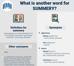 summery, synonym summery, another word for summery, words like summery, thesaurus summery