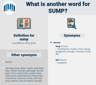 sump, synonym sump, another word for sump, words like sump, thesaurus sump