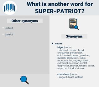 super patriot, synonym super patriot, another word for super patriot, words like super patriot, thesaurus super patriot