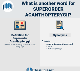 Superorder Acanthopterygii, synonym Superorder Acanthopterygii, another word for Superorder Acanthopterygii, words like Superorder Acanthopterygii, thesaurus Superorder Acanthopterygii
